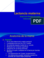 Lactancia-materna.ppt