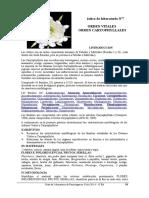 7. Guia de Laboratorio Orden Caryophyllales 2014v3