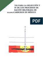 Fundamentos para la Selección y Aplicación de los Procesos de Recuperación Mejorada de Hidrocarbu_0 (1).pdf