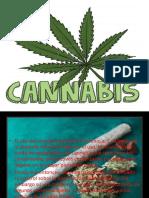 Marihuana Exp