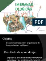 membranas-biologicas