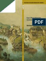Essay on Ottoman Modernizacion