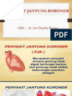 PJK,presentasi.pptx