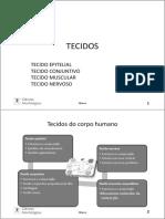 1- TECIDOS - Parte1 _ Epitelial-2