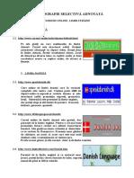 curs_online_lbstr_ro.pdf