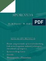 SPOROZOA 2.ppt