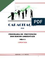 capacitação_ppra.pdf