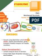 Energi dan Metabolisme 2013