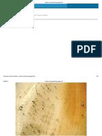 A Basic Kite Aerial Photography Kit