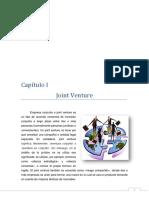 196944270 Joint Venture Monografia