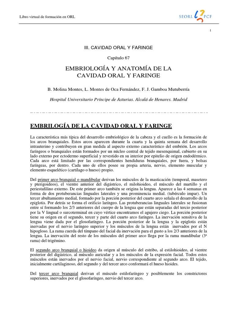 067 - EMBRIOLOGÍA Y ANATOMÍA DE LA CAVIDAD ORAL Y FARINGE.pdf