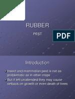 RUBBER Pest n Disease