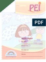 313269366-230084964-Pei-Medio-Mayor-1-pdf.pdf