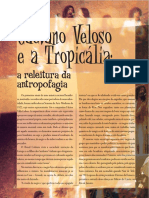Caetano-Veloso-e-a-Tropicalia.pdf