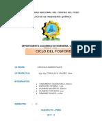 72043852 Ciclo Biogeoquimico Del Fosforo