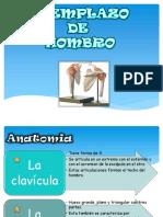Anatomia de Hombro y Tecnicas