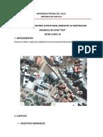 Dcp Informe