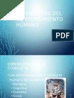 DIMENSIONES DEL COMPORTAMIENTO HUMANO.pptx