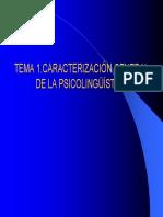 T1Leng_08_09.pdf