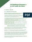 Virus Del Papiloma Humano y Cáncer de Cuello de Útero