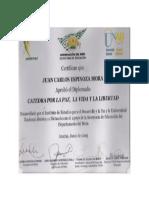 Diplomado. Catedra Por La Paz