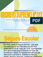 decretosupremo313-100824142248-phpapp01.ppt