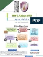 Inflamacion Final