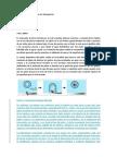 El papel de las enzimas en los detergentes.docx