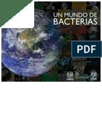 Mundo Bacterias