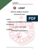 PAE-PALMA-ESQUIZOFRENIA.doc