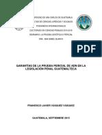 SEMINARIO GARANTIAS DE LA  LA  PRUEBA PERICIAL DE ADN. FRANCISCO VASQUEZ (1).pdf