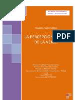 La Percepcion Social de La Vejez(5)