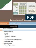 RAL.pdf