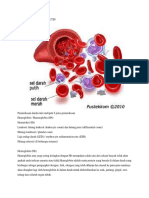 Pemeriksaan Darah Rutin