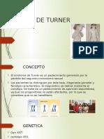 SINDROME DE TURNER y  klin.pptx