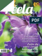 Pcela_Broj_1.pdf