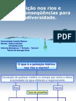 Poluicao Nos Rios e Maresconsequencias Para Biodiversidade 20860