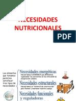 clase2_necesidades nutricionales
