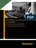 reifengrundlagen_pdf_es.pdf
