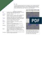 Autodesk 3ds Max - Std Prim