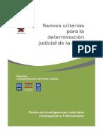 Detemrinacion Judicial de la Pena semintario Taller.pdf