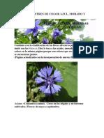 Flores Silvestres de Color Azul
