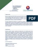 CV Chile Ambiente Agosto 2015