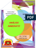 analisis inmediato.docx