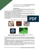 microbiologia1.pdf