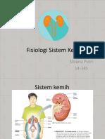 Fisiologi Sistem Kemih (Basic)
