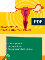 anatomyoffemalegenitaltract