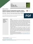 Isoflurano fornece neuroproteção em lesão cerebral hipóxico-isquêmica neonatal por inibição da apoptose