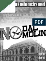 Vicenza NO Dal Molin
