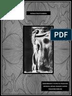 Dissertação Mestrado Performances Culturais - UFG  - Rodrigo Peixoto Barbara - 2017